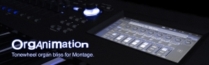 K-Sounds Organimation for Montage